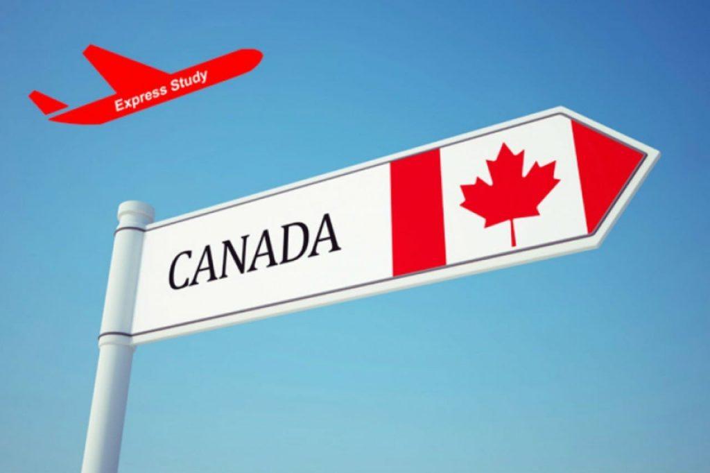 Canada là quốc gia có số lượng du học sinh rất lớn