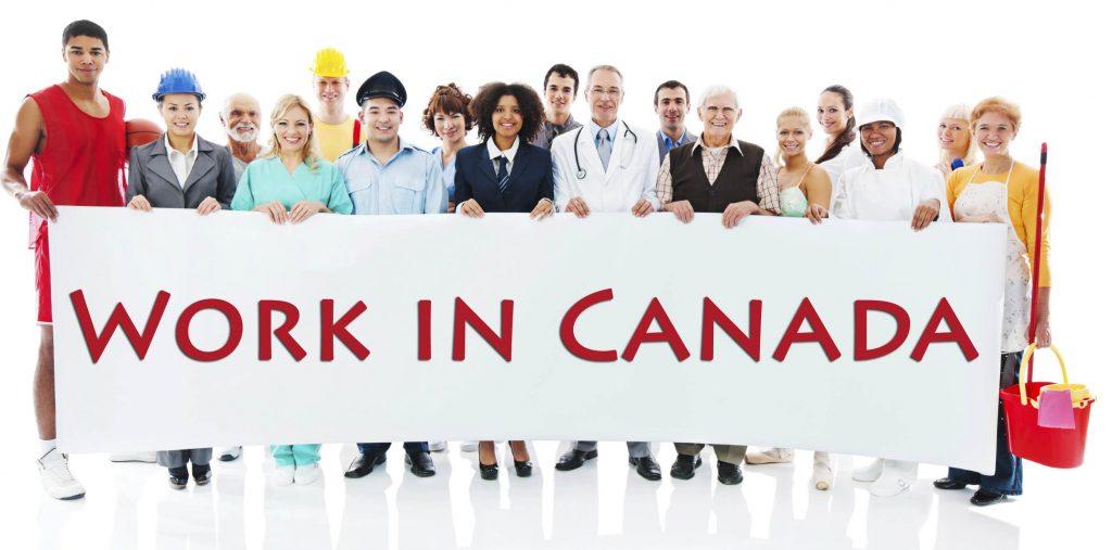 Canada có rất nhiều ngành dễ xin việc