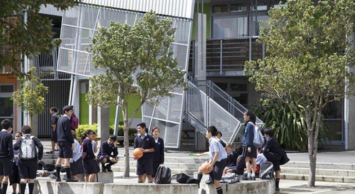 Môi trường học tập tại New Zealand năng động, sáng tạo